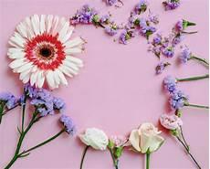 cornice a vista vista dall alto della cornice di fiori su sfondo rosa