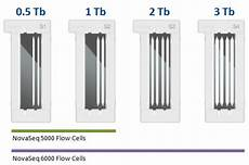 flow cell illumina novaseq illumina genetica