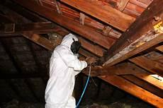 traitement du bois de charpente traitement de charpente 224 ensisheim contr 244 le et lutte