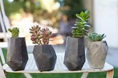 vasi per cactus geometric concrete succulent cacti planter by