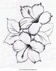 disegni di fiori a matita disegno a matita fiori