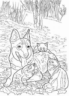 5 cats and dogs coloring pages sting