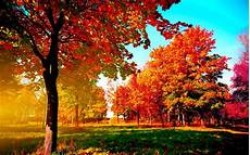 Fall Computer Backgrounds