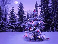 2010 merry christmas widescreen hd wallpaper or wallpapers free wallpapers