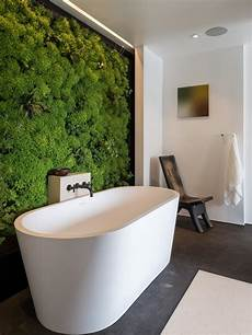 bathroom tubs and showers ideas clawfoot tub designs pictures ideas tips from hgtv bathroom ideas designs hgtv