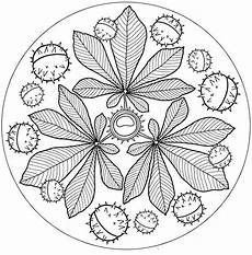 ausmalbilder herbst mandalas fab autumn fall mandala free printable for