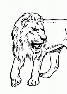 animals coloring sheets 17481 real animals coloring pages for printable free coloing 4kids