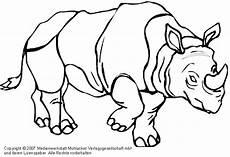Bilder Zum Ausmalen Nashorn Nashorn Medienwerkstatt Wissen 169 2006 2017 Medienwerkstatt