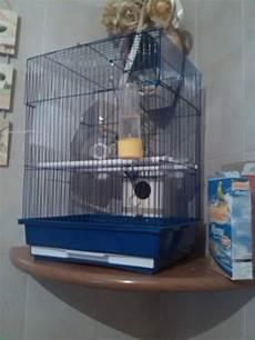 community gabbia una nuova gabbia cocorite e pappagallini ondulati