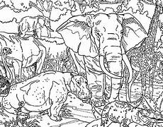 Ausmalbilder Tiere Afrika Elephant Coloring Pages Coloring Sky