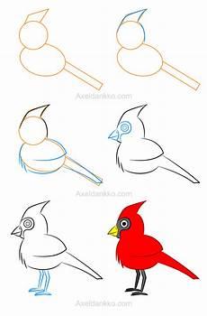 Comment Dessiner Un Flamant How To Draw A Cardinal Comment Dessiner Un Cardinal