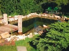 1 bassin artificiel 224 effet naturel