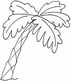palma llanera para colorear resultados de b 250 squeda para dibujos de palmera dibujo para colorear con im 225 genes dibujos