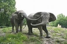 Opel Zoo Adresse - opel zoo kronberg ein herz f 220 r tiere magazin