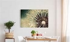 leinwandbild pusteblume leinwandbild pusteblume kaufen bilderwelten