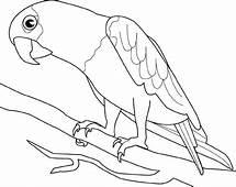 Malvorlagen Fur Kinder  Ausmalbilder Vogel Kostenlos