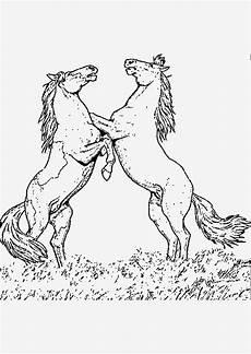 Pferde Ausmalbilder Malen Pferdebilder Zum Malen Kinder Malvorlagen Club