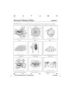 nature and animals worksheets 15101 search for animal homes hike get familiar with the bugs in your local habitat they are