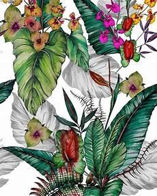 Flower Illustration Wallpaper by Regram Willartes Free Em Aquarela Exclusive