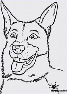 ausmalbilder hund katze pferd ausmalbilder tiere gratis 02 tierbilder zum ausmalen