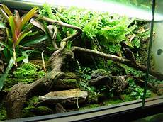 le exo terra exo terra terrarium reptiles zoo
