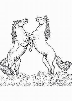 Ausmalbilder Erwachsene Kostenlos Pferde 41 Ausmalbilder Pferd Kostenlos Zum Ausdrucken Luxus