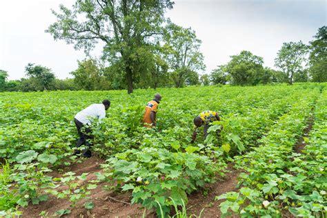 Les 4 Climats De La Cote D Ivoire