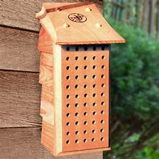 mason bee house plans mason bee house plans how to make a bee house