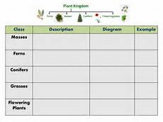 plant kingdom worksheets for grade 2 13758 plant classification and habitats by freddyhillman teaching resources