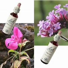 fiori di bach menopausa fiori di bach e menopausa menopausa