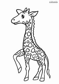 giraffes coloring pages 187 free printable 187 giraffe