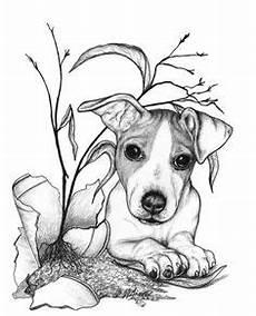malvorlage hund russel ausmalbild hund ausmalbilder f 252 r kinder tiere