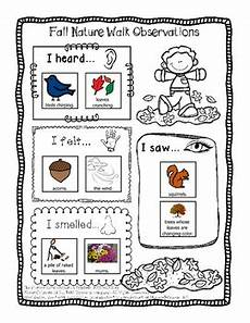 nature observation worksheets 15139 two free fall nature walk observation worksheets differentiated