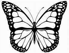 Schmetterling Malvorlagen Ausmalbilder Schmetterling Zum Ausdrucken