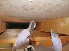 schimmel natürlich entfernen schimmel am dachstuhl ursachen und richtige sanierung