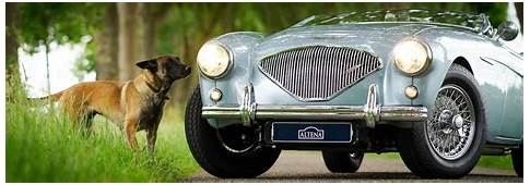 CLASSICARGARAGE Classic And Sports Cars For Sale Car