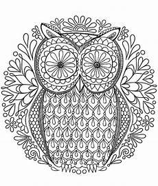 magical owl with big mandala mandalas with animals
