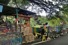Eulen Malvorlagen Jogja Java Reiseroute Highlights Indonesien Reiseblog