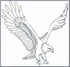 Gambar Burung Garuda Yang Mudah Digambar Semburat Warna