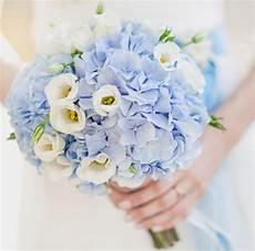 Brautstrauß Mit Hortensien - brautstrau 223 hortensie blau hochzeitsblumen in 2019