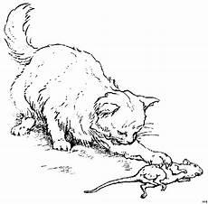 katze mit maus 3 ausmalbild malvorlage tiere