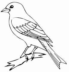 Malvorlage Vogel Zum Ausdrucken Vorlage Vogel Zum Ausdrucken 15 Jpg 467 215 488 Mit Bildern