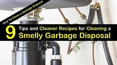 Cleaning Kitchen Drain Garbage Disposal by 9 Tips And Cleaner Recipes For Cleaning A Smelly Garbage