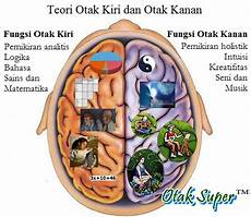 Otak Kanan Dan Otak Kiri Apa Fungsi Sebenarnya