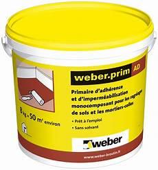 Primaire Accrochage Carrelage Weber Resine De Protection