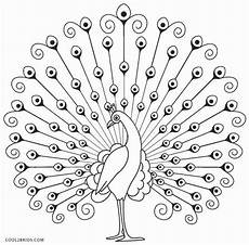 printable peacock coloring pages for cool2bkids