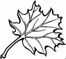 Gratis Malvorlagen Blatt Detailliertes Blatt Ausmalbild Malvorlage Blumen