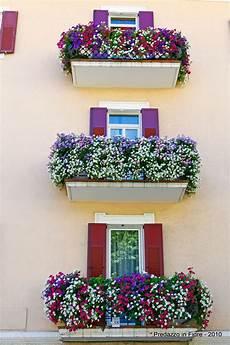 fioriere per davanzale finestra predazzo in fiore 2010 i vincitori e le foto dei balconi