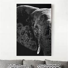 Leinwandbilder Schwarz Weiß - leinwandbild schwarz wei 223 afrikanischer elefant schwarz