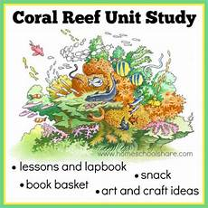 coral reef unit study and lapbook from homeschool share ihn must follow homeschoolers coral